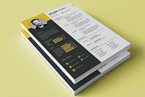 I will make professional cv, resume and portfolio design