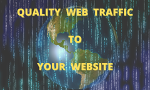 I will provide 30 days of Human traffic from social & organic web traffic from main searc