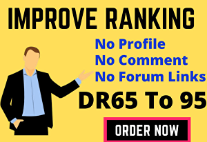 I will make high quality authority SEO do-follow back-links link building