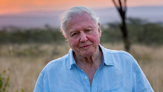 record a voice over in the style of David Attenborough (older) up to 125 words