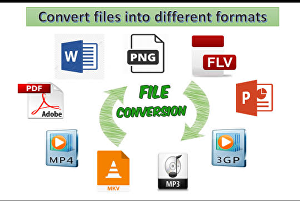 I will Convert your files to another files