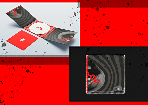 I will design an outstanding album cover