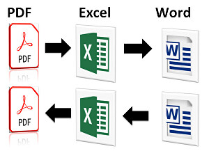 I will Convert Word to Pdf, Pdf to Word, make it Fillable, Editable
