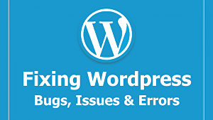 I will fix errors of WordPress