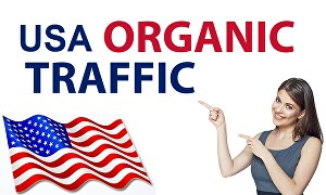I will send 30000 high quality targeted organic USA web traffic to your website