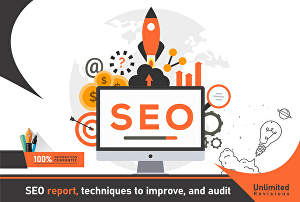 I will provide expert SEO report,  analysis  as 30 page Document