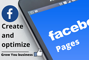 I will create a professional Facebook business Page for you