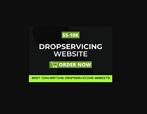 I will Design highly profitable income  drop servicing website, drop service store or drop servic