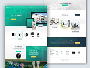 I will design and develop responsive Wordpress website within 24 hours