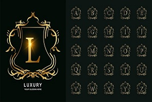 I will design your creative logo in 24 hrs