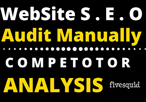 I will audit your website manually and give recommendations