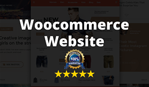 I will build WordPress WooCommerce website for your business