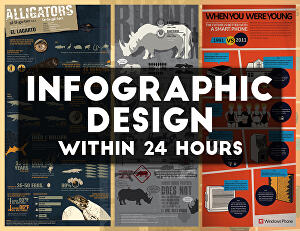 I will Create A Professional Infographic Design