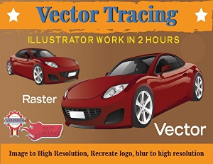I will do redesign and vector trace, image to vector, raster to vector