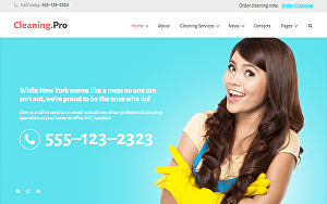 I will build house office cleaning booking WordPress website