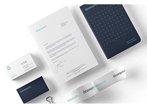 I will design a complete signature Branding kit for you business
