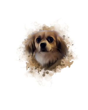 I will draw amazing pet oil painting in 24 hours