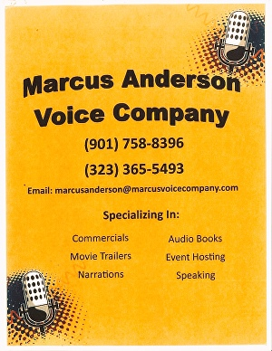 I will record an American English voice over for your project