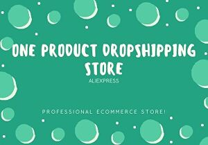 I will create one product WordPress Dropshipping store for you