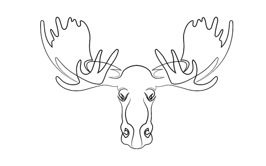 draw one line drawing illustration vector