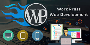 I will do web design and build WordPress website in 24 hours