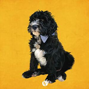 I will draw amazing vector art from your pet portrait