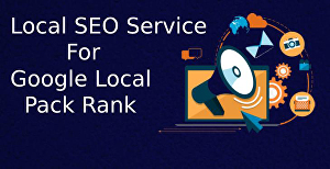 I will Provide Local SEO Service by GMB Optimization, Google Map Citation, and Local Listing