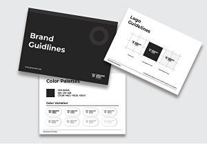 I will design a brand style guide and logo