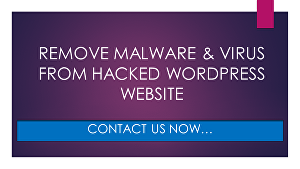 I will Clean malware, Hacked Virus, or Malicious code from WordPress