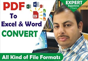 I will convert pdf to excel & word convert