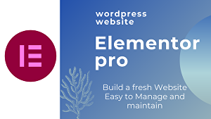 I will Create and Customize WordPress Website by Elementor PRO