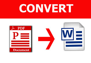 I will convert pdf into word file in 24 hrs