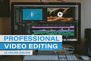I will provide professional video editing