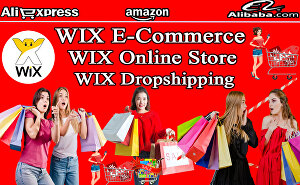 I will design or redesign wix online store, wix ecommerce website, wix dropshipping website, wix