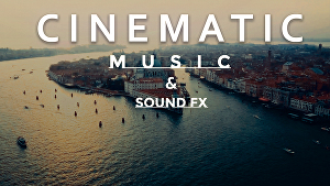 I will make professional cinematic and orchestral music for you