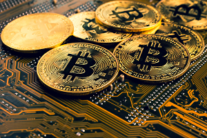 I will add bitcoin or crypto payments in wordpress woocommerce