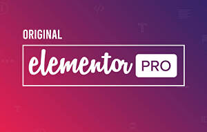 I will install elementor pro, activate elementor pro
