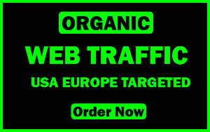 I will send USA and Europe based organic and targeted web traffic