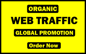 I will send 15 days of unlimited organic traffic to your website