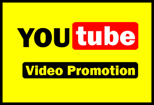 I will rank your Youtube video with SEO & social media promotion