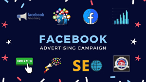 I will create Facebook advertising campaign for your page