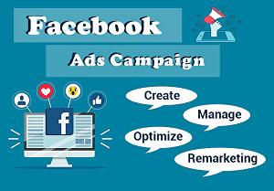 I will create Facebook Ads Campaign with targeted Audience
