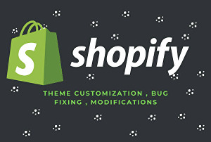 I will setup your shopify store and design or redesign your shopify website