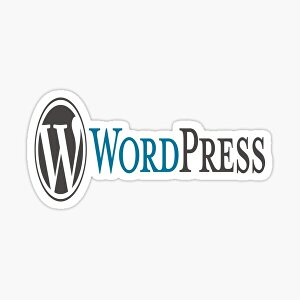 I will update and improve your WordPress website