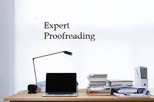 I will professionally proofread and edit up to 750 words of text for your website, blog or articl