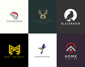 I will design a professional and unique logo design for your business