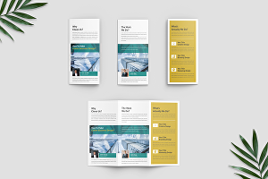 I will design bifold, trifold, or multipage brochure