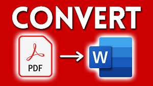 I will convert  any PDF to WORD document