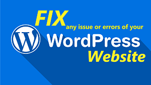 I will fix WordPress bugs, issues or errors for you