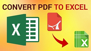 I will convert pdf to excel document
